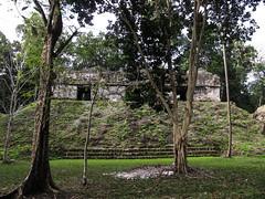 """Tikal: la Place des Sept Temples, un endroit important de la vie socio-politique <a style=""""margin-left:10px; font-size:0.8em;"""" href=""""http://www.flickr.com/photos/127723101@N04/25633187474/"""" target=""""_blank"""">@flickr</a>"""