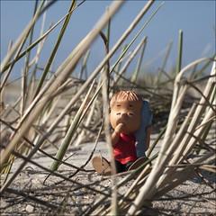 linus van pelt (horn blower) Tags: beach denmark comic peanuts beachlife olympus linus 118 rm rm rm charlesmschulz linusvanpelt beachgras mzuiko mzuiko45mm118