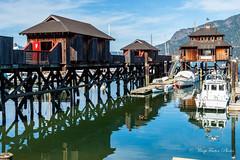 Cowichan Bay (WarpFactorEnterprises) Tags: road trip vacation vancouver island spring bayport cowichanbay 2016springvancouverislandroadtripvacationcowichan renfrewsookevictoria bayspring2016cowichanbayvancouverislandharbourboatsscenery2016