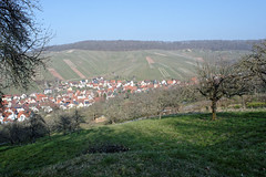 DSC_9324_20160320_6932_DxO_Struempfelbach (krixlibux) Tags: germany strümpfelbach