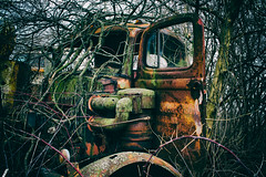 I've Created A Monster (Off The Beaten Path Photography) Tags: abandoned nature graveyard monster digital truck canon automobile antique automotive forgotten dslr abandonment boneyard monstertruck offthebeatenpath canon60d abandonedindiana abandonedamerica