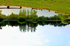 mirror/door (Ramona Marotta) Tags: park trees summer sky italy parco lake art nature water girl alberi last relax landscape mirror poetry italia peace nuvola estate view arte outdoor talk cielo soul vista pace modena visual something dei yaz romagna bulut gkyz sensi lanscapes unione quiete aalar geen scorsa