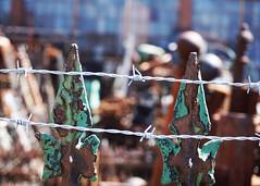 No Entry (Flapweb) Tags: fence rust pennsylvania ruin rusty scranton friday fenced
