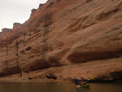 hidden-canyon-kayak-lake-powell-page-arizona-southwest-DSCN4951 (lakepowellhiddencanyonkayak) Tags: arizona southwest utah kayak kayaking page coloradoriver paddling nationalmonument lakepowell slotcanyon glencanyon watersport glencanyonnationalrecreationarea recreationarea guidedtour hiddencanyon utahhiking arizonahiking kayakingtour halfdaytrip craiglittle lakepowellkayak lonerockcanyon kayakinglakepowell hiddencanyonkayak seakayakingtour seakayakinglakepowell arizonakayaking utahkayaking