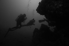 Into the Wreck (PacificKlaus) Tags: ocean history underwater philippines worldwarii wreck coron palawan wreckdiving japaneseimperialnavy
