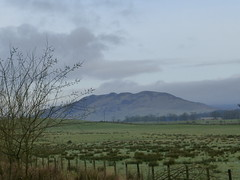Conic hill (pigeon812711) Tags: conichill