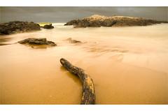 Cantabrico Sea (hurtado.marcoantonio) Tags: sea espaa beach del clouds mar spain north playa northsea nubes cantabria norte northcoast largaexposicin liencres marcantbrico longsposiure