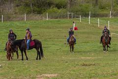 DSCF0316.jpg (Ed Traywick) Tags: horses horse leo robyn obstacles horseclinic