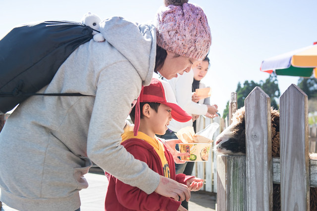 戶外親子攝影,全家福攝影推薦,兒童親子寫真,兒童攝影,南投清境攝影,紅帽子工作室,婚攝紅帽子,清境小瑞士攝影,清境農場親子,清境農場攝影,親子寫真,親子攝影,familyportraits,Redcap-Studio-76