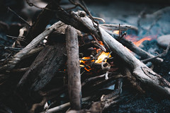 (kendall.plant) Tags: california wood travel camping camp mist green beach nature fog dark point outdoors fire coast moody hiking hike wanderlust adventure explore campfire driftwood 55mm coastal backpacking fade reyes lightroom