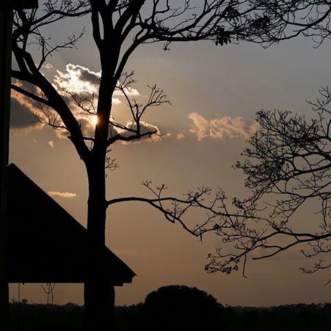 Gosto do final de tarde!  fotoautoral  luznatural  finaldetarde  pordosol   sunset 9ed59bd3ecb