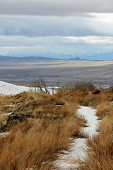 Snow on path Cold Water Canyon above Winnemucca Nevada 110308-145444 C4 (Wambeke & Wambeke Photography, Art, & Textiles) Tags: snow highdesert desertlandscape snowcappedmountains coldwatercanyon nevadadesertinwinter charliewambekephotography canoneos60dphotograph snowonhighaltitudepath
