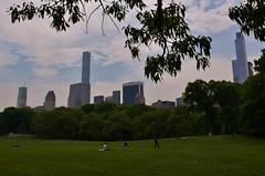 Central Park-Sheep Meadow, 05.16.15 (gigi_nyc) Tags: nyc newyorkcity spring centralpark sheepmeadow springincentralpark