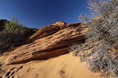 20160323-IMG_2490_DXO (dfwtinker) Tags: arizona water rock stone sunrise sand desert w page dfw whitaker glencanyondam pageaz kevinwhitaker dfwtinker ktwhitaker worthtexastraveljapan whitakerktwhitakerktwhitakervideomountainstamron