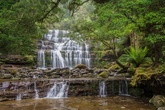 Serenity (robertdownie) Tags: longexposure trees tree green water forest river waterfall rainforest australia falls liffey jungle tasmania wilderness worldheritage greatwesterntiers