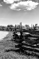 Zigzag (Scosanf) Tags: wood travel shadow sky blackandwhite bw sunlight monochrome clouds canon fence eos wooden spring texas farm ef2470mmf28lusm 6d washingtononthebrazos