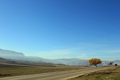 on the road (social.animal) Tags: road morning sea coffee relax bluesky shore rest peacefulnature