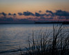 Day 116- Another sunset! (Wishard of Oz) Tags: sunset beach dusk day116 project365 25apr16 2016yip 366the2016edition 366in2016 30383288