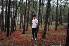 Tuấn Quyền (Hoàng Khôi Nguyên 48) Tags: boy tree men glass pine forest sneakers vietnam casio highland land vans oldskool jogger rayban gshock ootd daknong