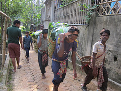 IMG_6909.jpg (Kuruman) Tags: sylhet bangladesh srimangal
