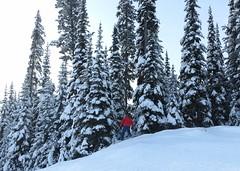 On the edge (Ruth and Dave) Tags: mountain dave snowboarding jumping skiresort edge snowboarder piste sunpeaks sunpeaksresort todmountain