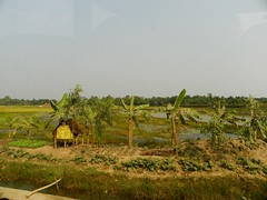 rural landscape (juggadery) Tags: india bengal westbengal 2015 sundarbans