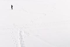 IMG_8767-13 (Johann Kp) Tags: old winter light white lake snow cold ice nature silhouette landscape lost frozen estonia mood moody bright path minimal adventure explore quarry minimalist mnniku