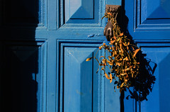 DSC_9801 (adrizufe) Tags: door blue puerta nikon ngc sombra elder ramo ea bizkaia basquecountry aldaba nikonstunninggallery aplusphoto d7000 adrizufe adrianzubia
