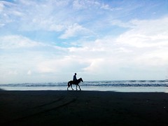 Searide (ainulislam) Tags: blue sea sky horse cloud beach silhouette ride outdoor