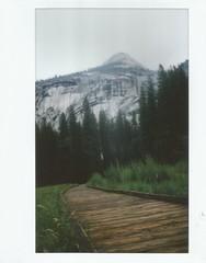 yosemite (kristen cynthia) Tags: nature nationalpark scenery walk meadow hike yosemite instantphotography fujifilminstax