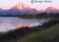 Alpen Glow-Oxbow Bend at Sunrise-Grand Tetons National Park-Wyoming (69) (moelynphotos) Tags: mist reflections dawn mountmoran grandtetons alpenglow grandtetonnationalpark oxbowbend surnrise moelynphotos
