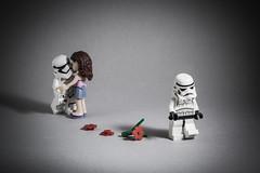 Grass is always greener (Yangchih) Tags: friends toy starwars sad lego stormtrooper minifigure firstorder