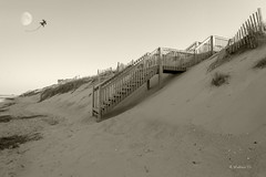 Brian_OBX 168a LG Sepia_062815_2D (starg82343) Tags: vacation moon kite beach grass sepia stairs fence outside outdoors evening nc sand dunes sandy hill steps northcarolina monotone stairway coastline grayscale 2d picturesque outerbanks lunar sanddunes eastcoast sandfence brianwallace sanddunefence