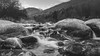 B&W-00668 (alessandro.polla) Tags: bridge blackandwhite bw italy mountains ice nature water river landscape woods iced woodbridge tentino