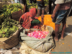 02 CALCUTA 26-calcuta-mercado-de-las-flores-6 (viajefilos) Tags: india pedro jaume calcuta viajefilos