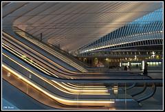 Gare des Guillemins 163a (Jean Marie Bailly) Tags: belgique calatrava lige wallonie provincedelige garedesguillemins