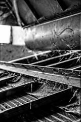 Interwoven (Dreamdancer_77) Tags: old abandoned lost industrial alt decay grain rusty technik silo warehouse machinery technical ddr industrie gdr dilapidated rostig gros ruined collapsed urbex verfall veb getreide maschinen storagebuilding lostplaces lostplace getreidespeicher