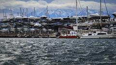 Mountain Of Boats (Sailor Alex) Tags: france marina boats marine yachts cruisers boatyard sailin portleucate sailoralex windedvoyage