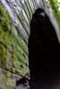 Ex Dianamificio Nobel #1 (fuxiag) Tags: ex guerra worldwarii photowalk nobel signa carmignano fabbrica mondiale abbandonata seconda dinamificio luoghisegreti alpha7ii sonyalpha7ii