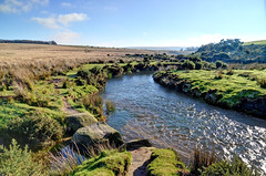 Cherry Brook, where salmon breed on Dartmoor (Baz Richardson (now away until 26 Oct)) Tags: salmon devon streams dartmoor cherrybrook brooks redds salmonrivers