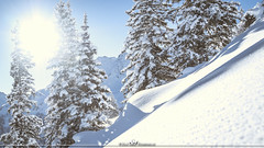 Tourismus & Gastronomie (MaxMeissner) Tags: trees winter mountain snow woods wonderland tourismus wunderland gastronimie