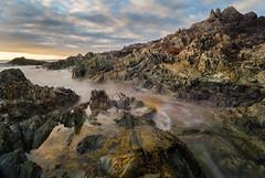 Tarkine Coast (laurie.g.w) Tags: ocean water rock bay coast shoreline australia tasmania coastline tarkine seasape