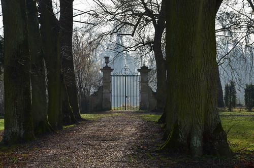 Abbaye-de-Chaalis_0018