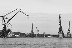 Gteborgs hamn (agnetaberlin) Tags: blackandwhite gteborg sweden sony gothenburg sverige hamn varv kranar
