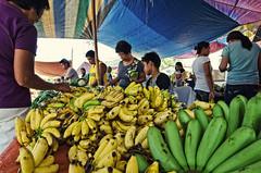 Banana Republic (benchorizo) Tags: candid philippines markets bananas iloilo banias benchorizo romeobanias