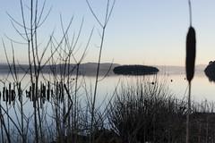 Balmaha - Loch Lomond (Mal Stone) Tags: 350d scotland spring canonxt lochlomond balmaha