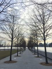 (_Fidelio_) Tags: park nyc trees winter rooseveltisland