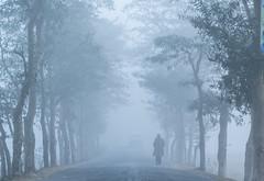 last winter (Pias rahman) Tags: fog ngc explore sylhet