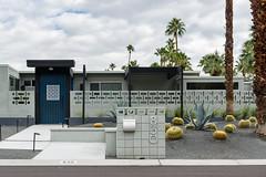 P.S.-16-030 (schmikeymikey1) Tags: trees cactus plants house building landscape succulent doors path palmtree walls
