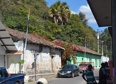 Panajachel, Solol, Guatemala (zug55) Tags: guatemala bougainvillea centralamerica pana panajachel solol americacentral sololdepartment departamentodesolol